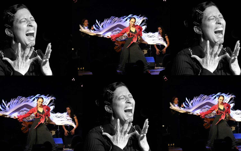 01-Flamenco